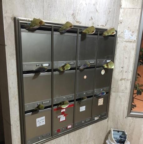 הפצה-בתיבות-דואר